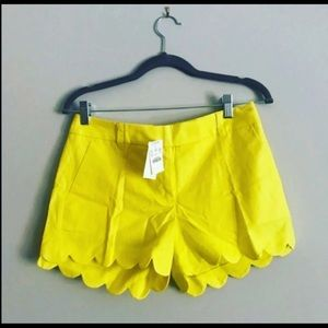 New J.Crew scallop hem shorts in yellow Size 4
